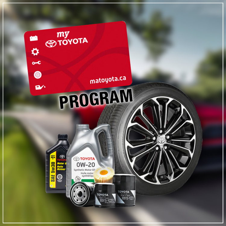 my toyota program